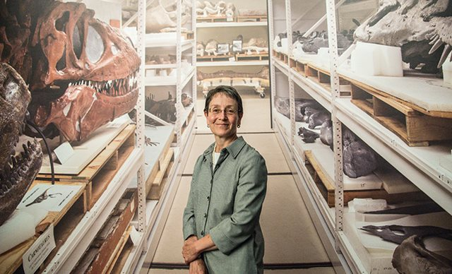 How a horticulture major ended up as the Field Museum's general counsel - Photo by Rena Naltsas